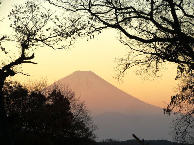 IMG_0008_fuji.jpg